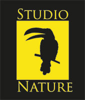Studionature Tocumen